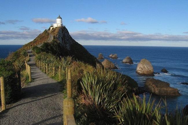 маяк Nugget Point Новая Зеландия фото 1 (650x433, 257Kb)