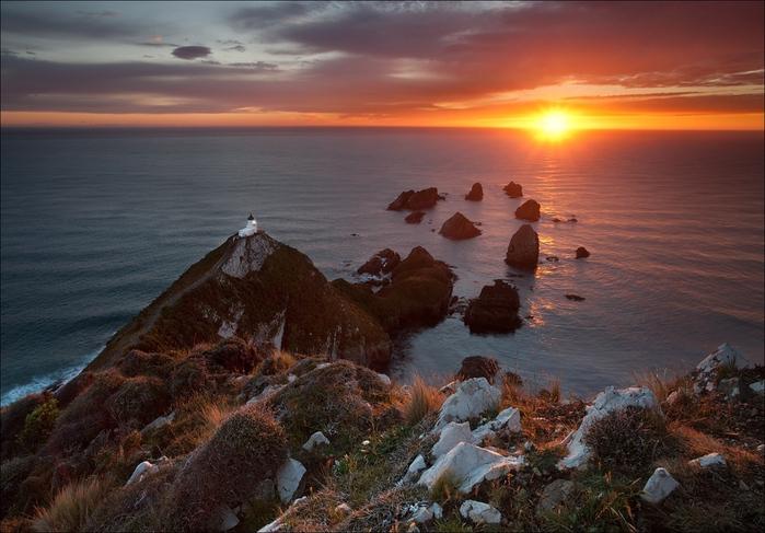 маяк Nugget Point Новая Зеландия фото 5 (699x487, 341Kb)