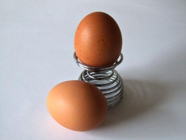 Eggs-5486 (640x480, 68Kb)