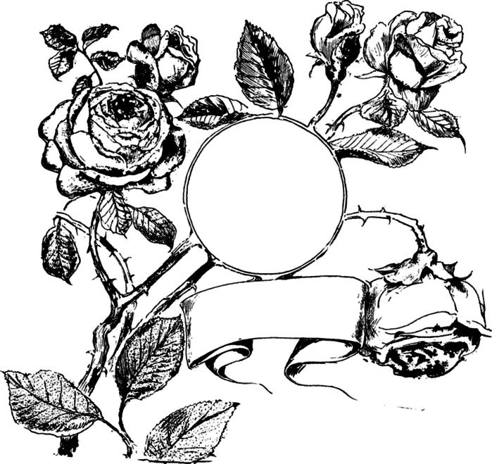 78846516_large_roses031 (700x659, 144Kb)