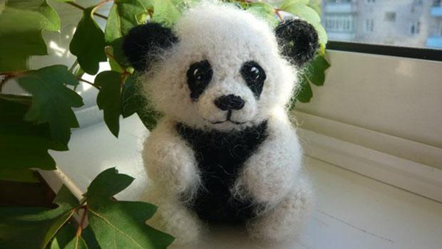 panda (620x350, 52Kb)