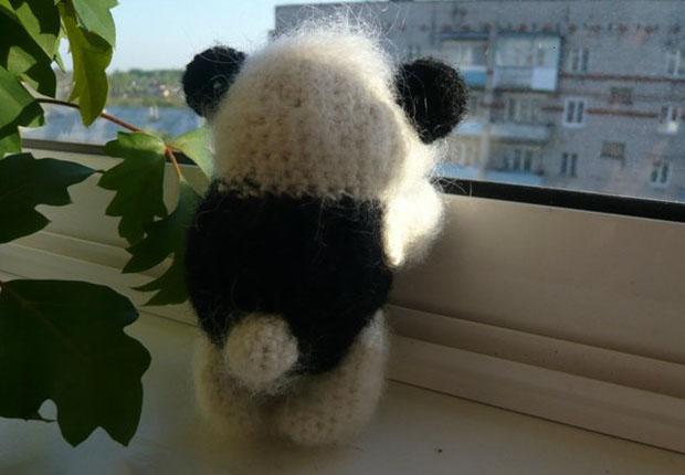 panda2 (620x430, 53Kb)