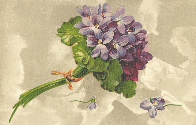 Flowers107 (640x409, 165Kb)