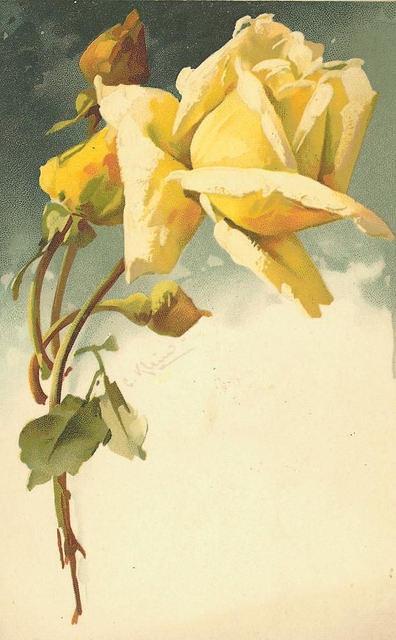 Flowers118 (396x640, 138Kb)