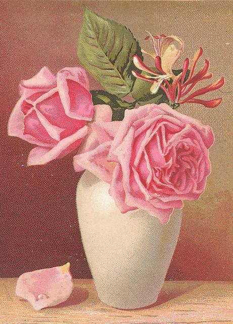 Flowers133 (461x640, 272Kb)