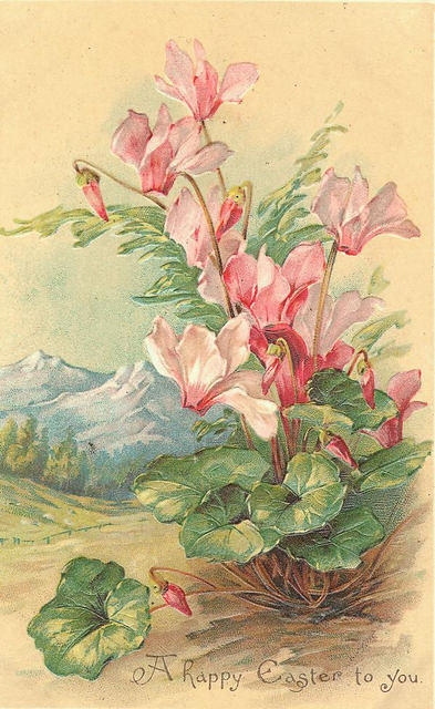 Flowers139 (393x640, 199Kb)