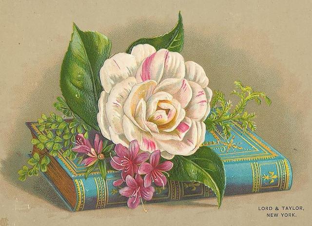 Flowers155 (640x463, 230Kb)
