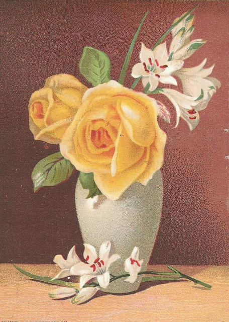 Flowers163 (456x640, 270Kb)
