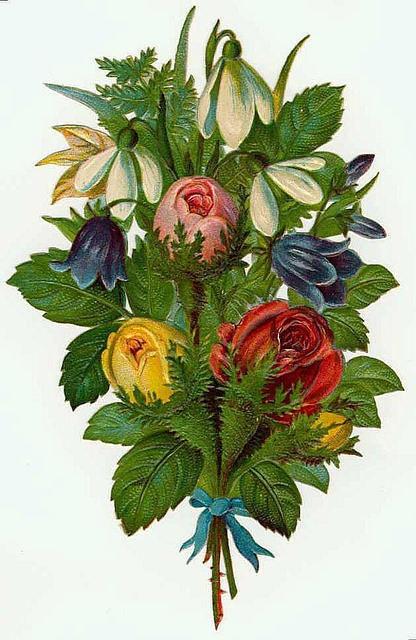 Flowers174 (416x640, 183Kb)