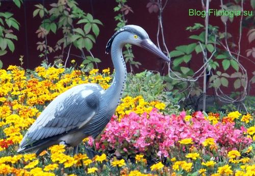 Серый журавль - фигура /3241858_bird3 (500x344, 184Kb)