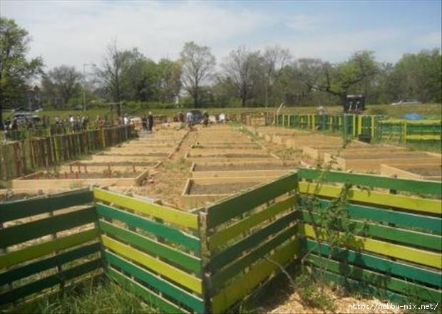 pallet-fences (620x441, 140Kb)