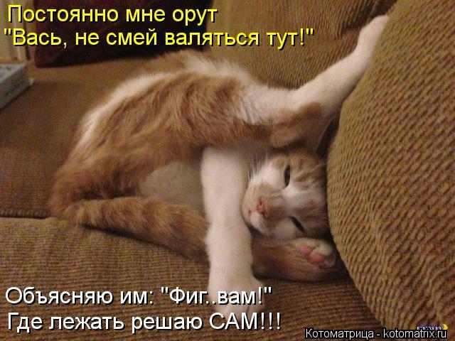 kotomatritsa_Uc (500x480, 295Kb)