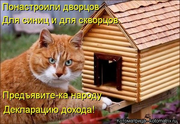 kotomatritsa_JQ (599x411, 171Kb)