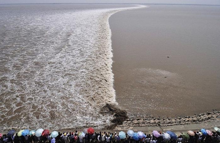 приливная волна на реке цяньтан китай (700x455, 258Kb)