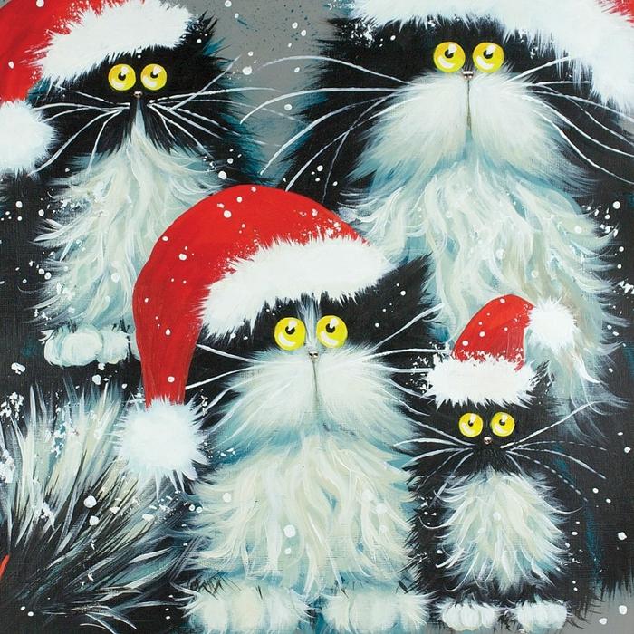 смешные коты Kim Haskins 5 (700x700, 450Kb)