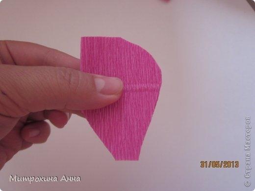 английская роза из конфет мастер-класс (5) (520x390, 56Kb)