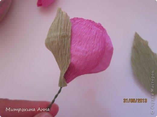 английская роза из конфет мастер-класс (20) (520x390, 61Kb)