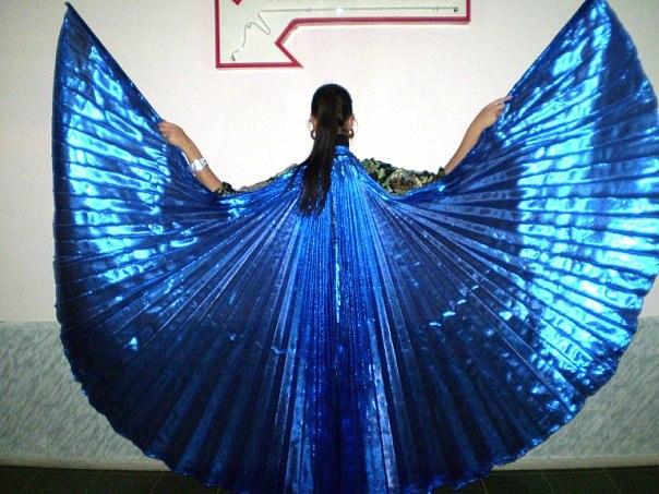 Как сделать костюм с крыльями своими руками 40
