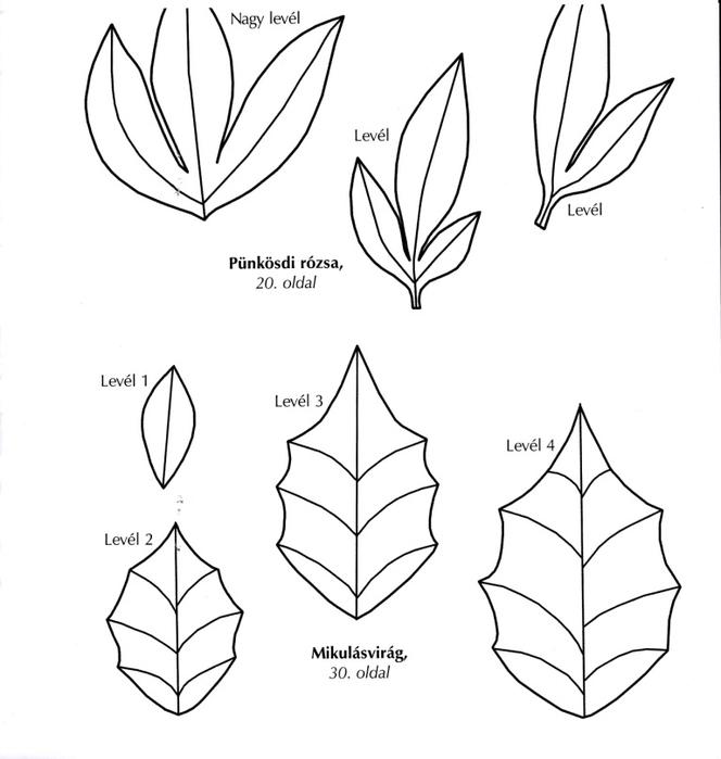 Цветы из креповой (гофрированной) бумаги - журнал (39) (664x700, 122Kb)