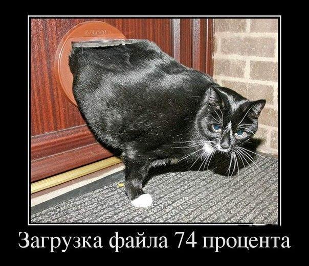 -q_S_dwYOAE (604x521, 89Kb)