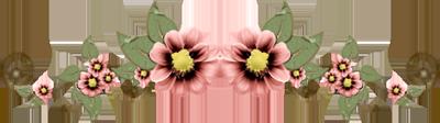 5997af697ae1 (400x112, 169Kb)