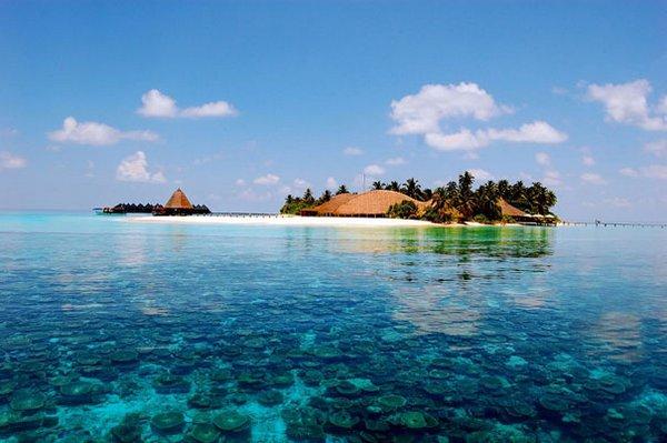 1868538_Maldivi3 (600x399, 46Kb)