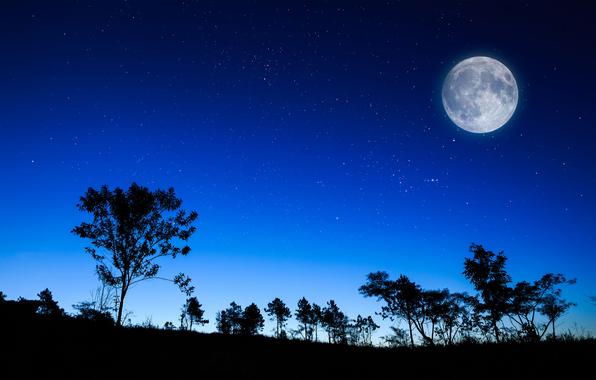 луна и звезды в ночи/4348076_407049 (596x380, 189Kb)