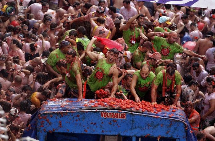 томатина фото 1 (700x458, 334Kb)