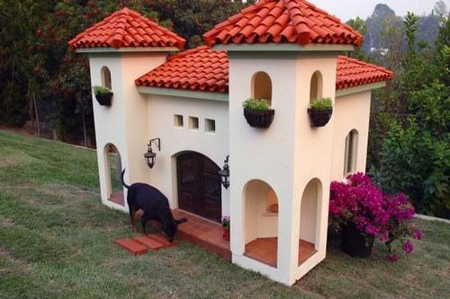 домики для собак фото 3 (500x333, 103Kb)