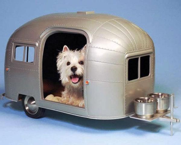 лежанки для собак фото 1 (600x480, 125Kb)