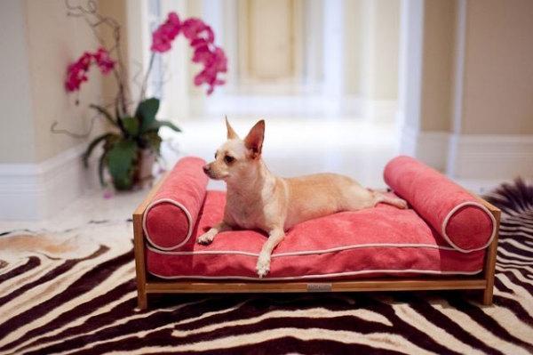 лежанки для собак фото 7 (600x399, 128Kb)