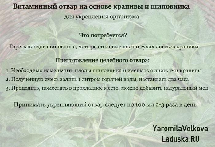 4716146_vitaminniyukreplausiyotvarkrapivasipovnik (700x477, 125Kb)