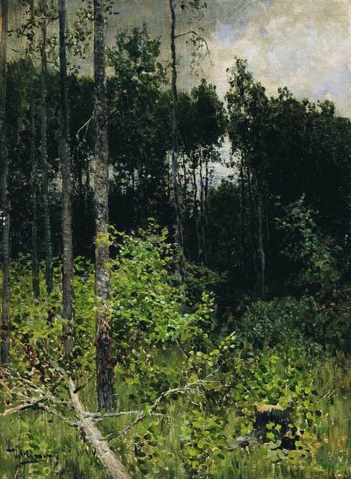 Осиновая рощица. Серый день. 1884 (513x700, 97Kb)