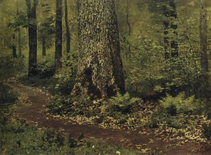 Тропинка в лиственном лесу. Папоротники. Около 1895 (700x512, 84Kb)