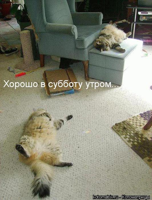 kotomatrix_36 (533x700, 79Kb)
