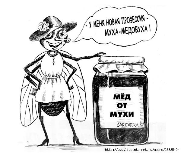 Анекдот Про Муху