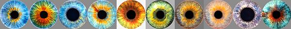 eyez_small (600x60, 80Kb)