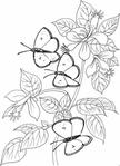 Превью schmettblumen7 (289x400, 74Kb)