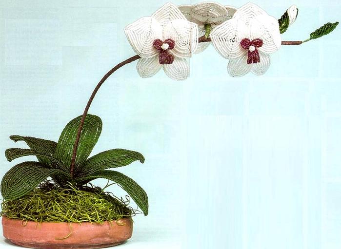 Цветы из бисера. ОРХИДЕЯ (2) (700x511, 300Kb)