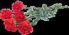 dlya-fotoshopa-23-fevralya-klipart18.png/4382988_0_cb8bb_de42829_XS (100x52, 11Kb)