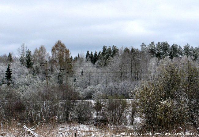 Деревня. Май. Снег./1399223821_IMG_5868 (650x450, 194Kb)