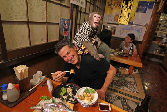 мартышки официанты ресторан кафбуки токио 1 (575x387, 329Kb)
