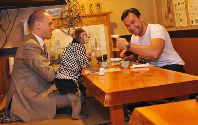 мартышки официанты ресторан кафбуки токио 3 (639x403, 213Kb)