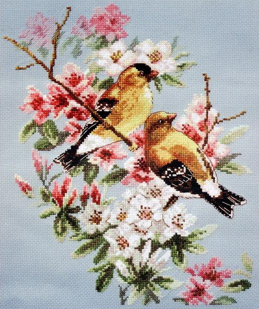 Птицы на ветке.
