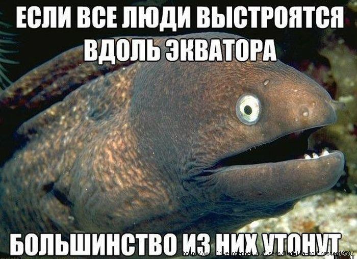 5037328_podborka_61_1_ (700x508, 197Kb)