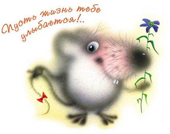 pust_zhizn_ulybaetsya (578x457, 62Kb)