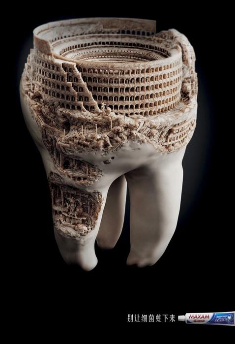 зуб фото 1 (478x700, 151Kb)