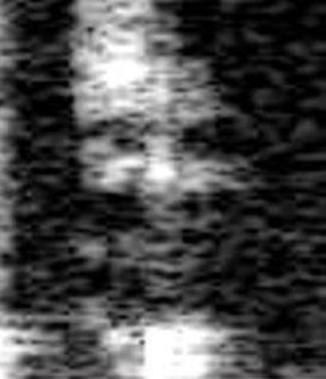 ESW_UEpf46E (326x379, 41Kb)