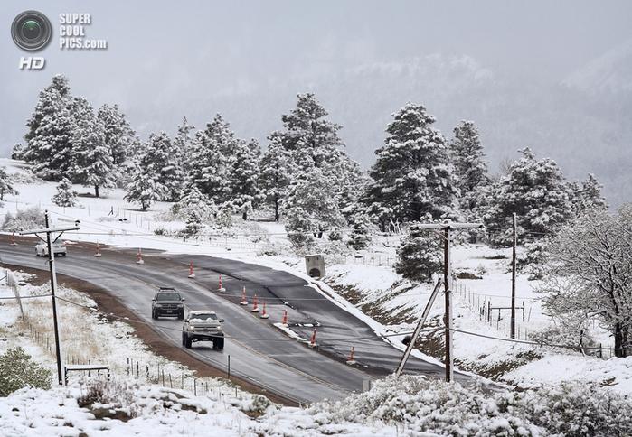 весенний снегопад фото 4 (700x484, 414Kb)