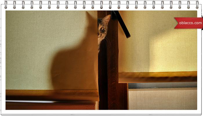 Кошка, плетеная из газетных трубочек. Мастер класс